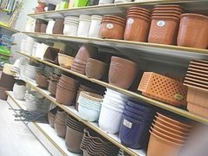 【100均】セリアの鉢を見てきた【SERIA】 じょう …