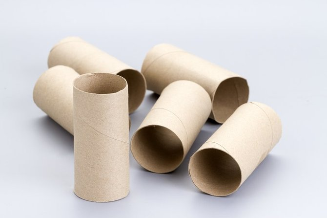 Weboo for Things to do with empty toilet paper rolls
